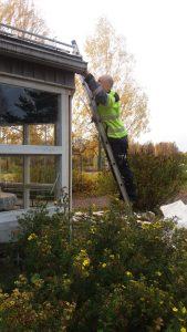 Esa on vihreällä takapihalla kiivennyt rakennusta vasten nojaamassa oleville tikapuille räystästä puhdistamaan.