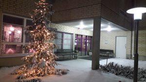 Jouluvaloilla valaistu kuusi lumisen sisäänkäynnin luona, sisältä loistaa valoa.